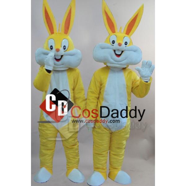 Two Cartoon Rabbits Mascot Costume